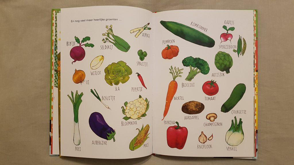 groente moestuin
