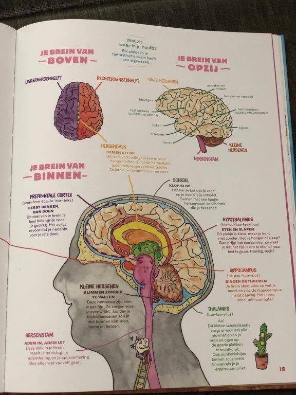Het hersenhotel