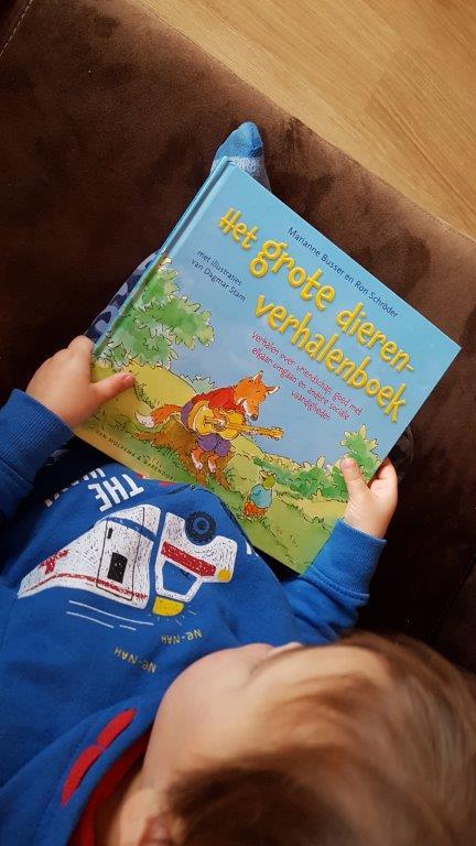 Het grote dierenverhalenboek. Marianne Busser Ron Schroder