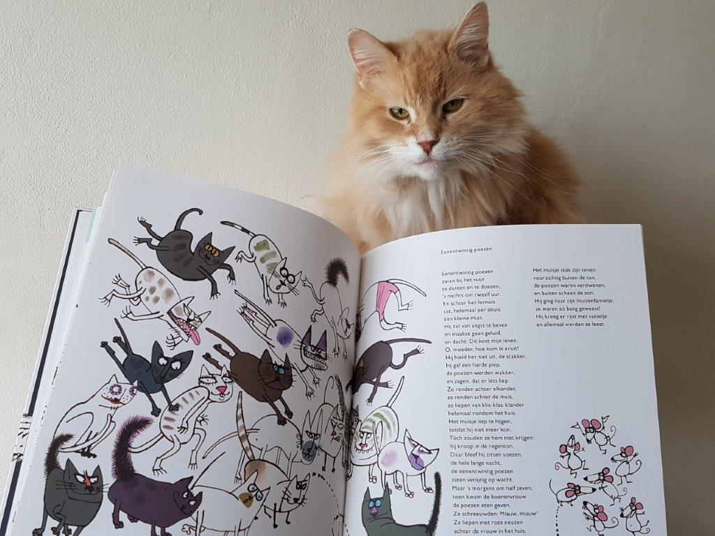 miauw, miauw, miauw van Annie MG Schmidt