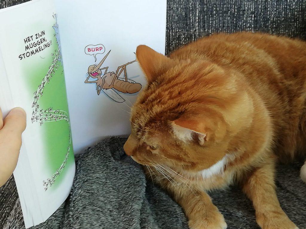 kat leest watkat