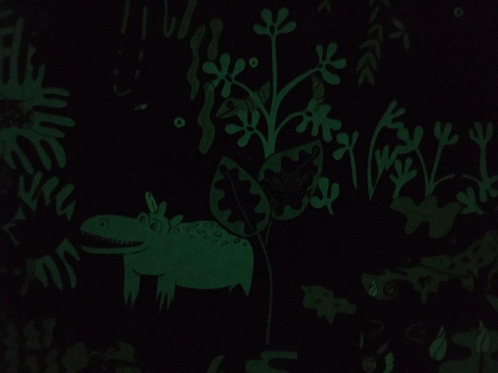 dag en nacht in het regenwoud