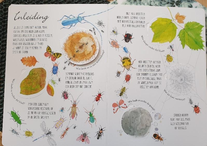 kriebelbeestjes flapjesboek