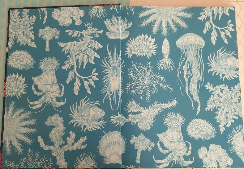 dieren van de zee