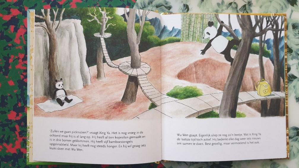 pandaberen in de dierentuin