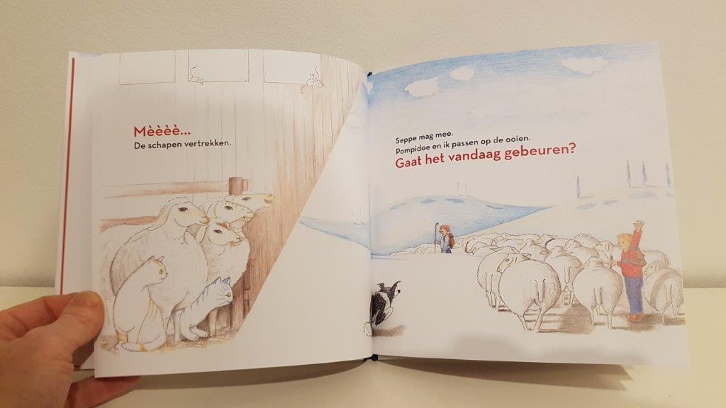 poes bij de schapenboer