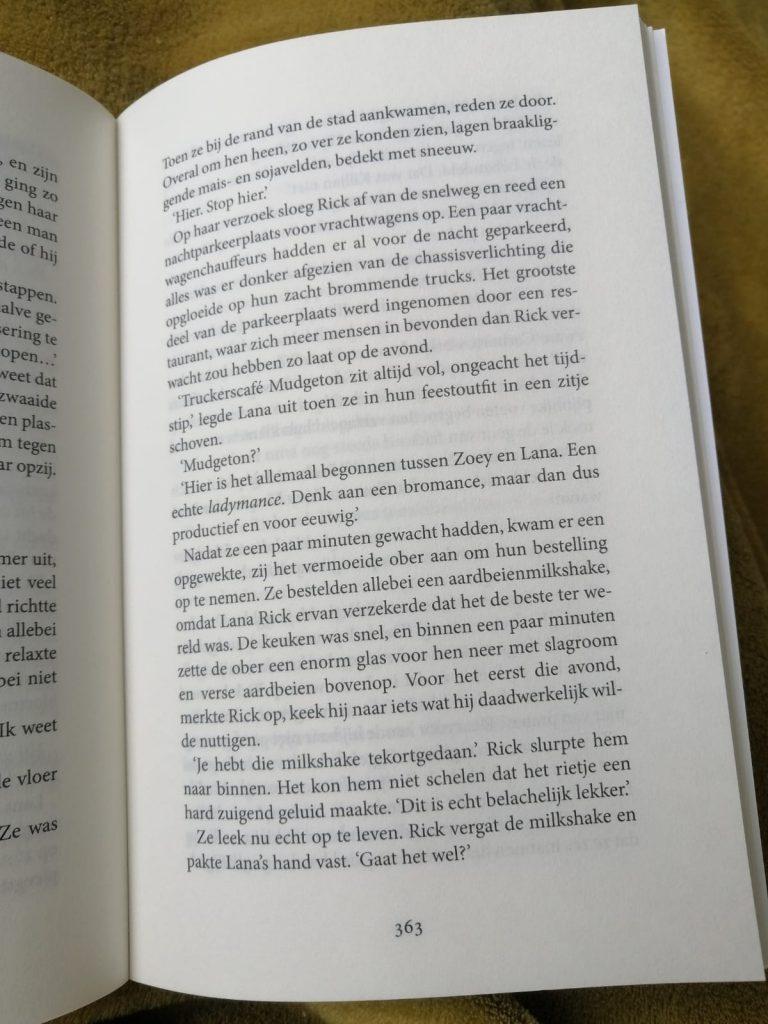 Droomman zwijmelboek verhaal