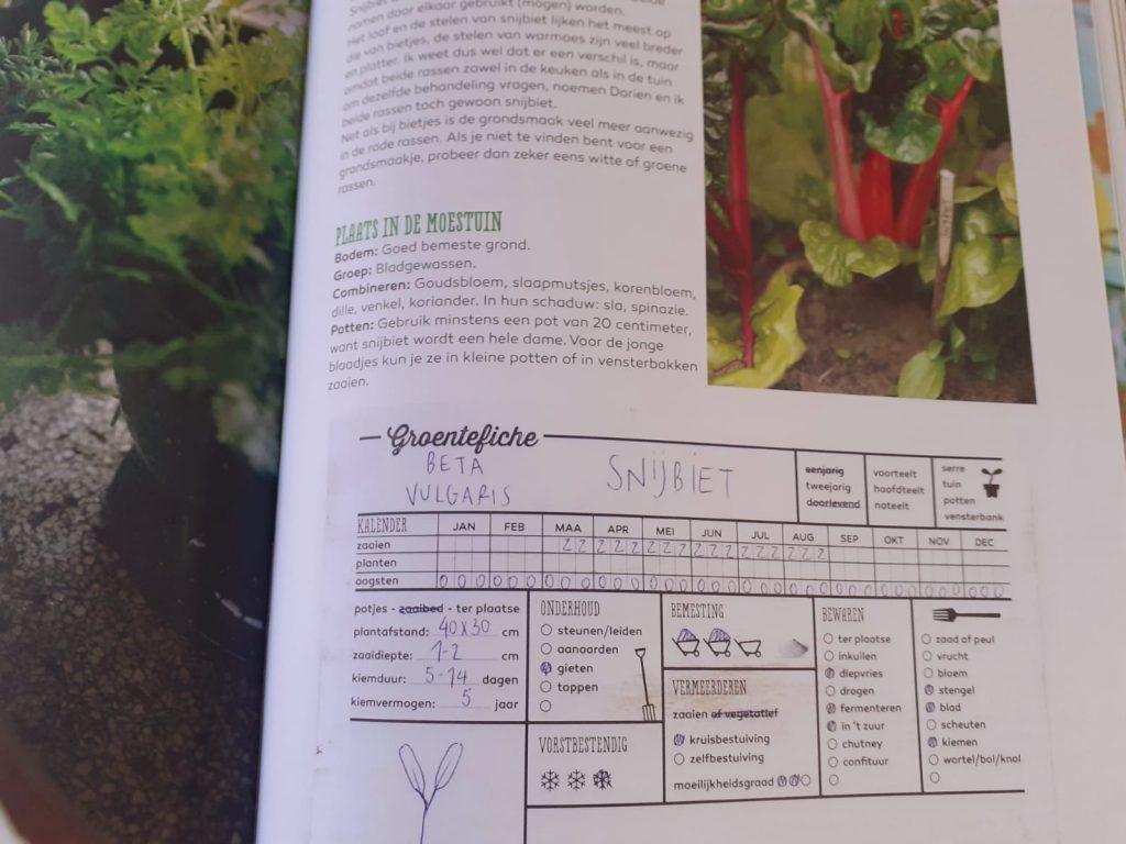 groentefiche