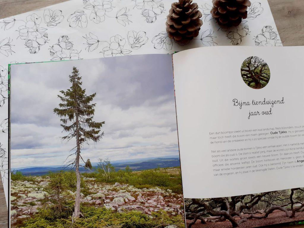 de wonderen van het bos zweden