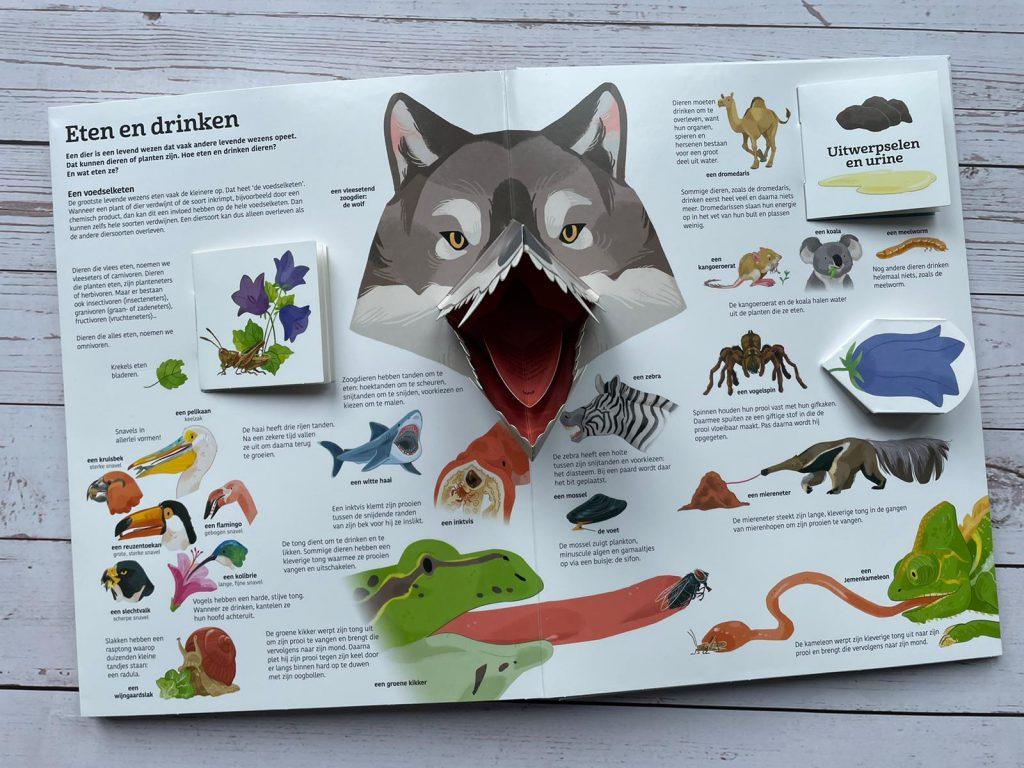 Het grote boek over dieren
